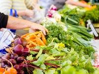 Visit Local Farmers Markets Near Homes in Daytona Beach and Ormond Beach